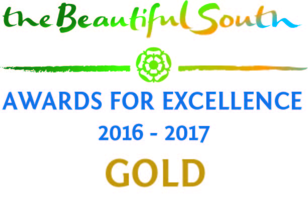 Beautiful South Awards Logo Gold 2016 - 2017